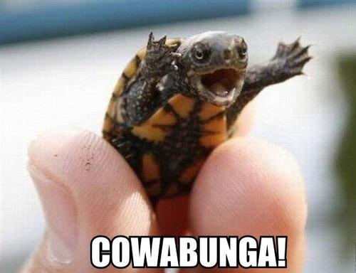 turtle cowabunga krang