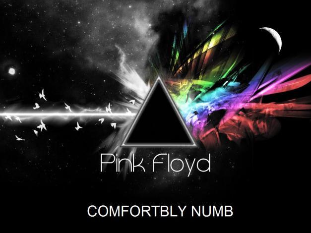 pink floyd - comfortbly numb