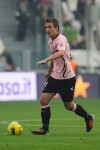 Armin Bacinovic Palermo