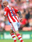 Stephen Ireland Stoke City