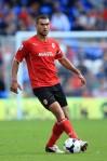 Steven Caulker Cardiff City